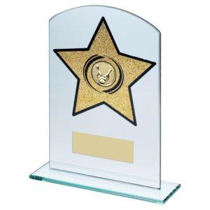 Gold Glitter Star Glass Ten Pin Bowling Trophy 203mm Free Engraving (TD949GC) td