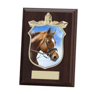 Equestrian Titan Wooden Shield,Trophy, Award 175mm,FREE Engraving (PL15103D) trd