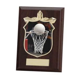 Netball Titan Wooden Shield Trophy,125mm,FREE Engraving (PL15126B)