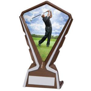 Phoenix Male Golfer Plastic Plaque Trophy,160mm,FREE Engraving (AT4238K) cl