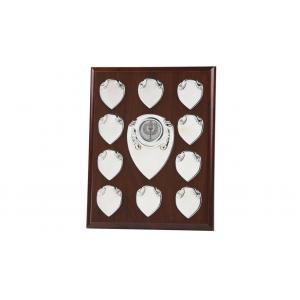 10 Year Annual,Perpetual Plaque,Shield, 230mm x 178mm FREE Engraving (166B)twt