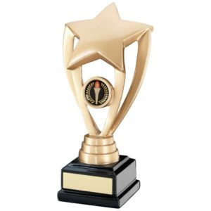 Gold Shooting Star Trophy Award 197mm, FREE Engraving (RF16B) TD