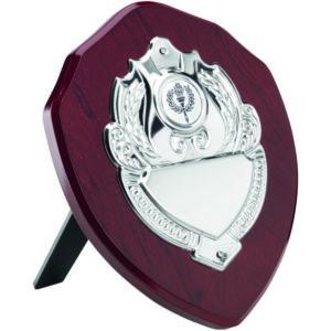 "100mm (4"") Wooden Presentation Shield,Trophy, Award, FREE Engraving (TRS4) td"