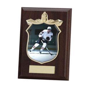 Ice Hockey Titan Wooden Shield Trophy, 125mm, FREE Engraving (PL15120B)