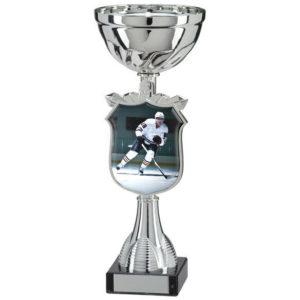 Ice Hockey Trophy Cup, Award, 295mm, FREE Engraving (TQ15120E) trd