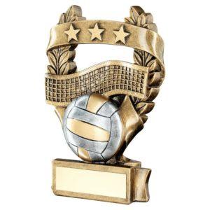 Laurel Stars Volleyball Trophy Award 191mm FREE Engraving (RF497C) td